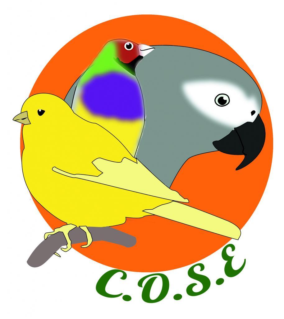 Club Ornithologique Sud Est